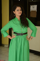 Geethanjali in Green Dress at Mixture Potlam Movie Pressmeet March 2017 068.JPG