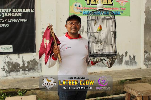 Jawara Lovebird M1 A - Lovebird Gordon milik Mr.Guni Dampit