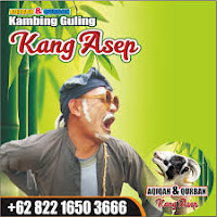 Aqiqah di Bandung Kota Paling Murah,aqiqah di bandung kota,aqiqah di bandung,aqiqah bandung