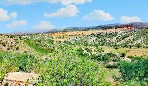The Beautiful View Of Kathwai
