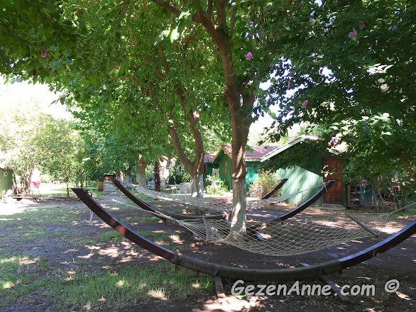 Emin pansiyonun ortamı, yeşil gölgeler ve hamaklar çok huzurlu, Çıralı Antalya