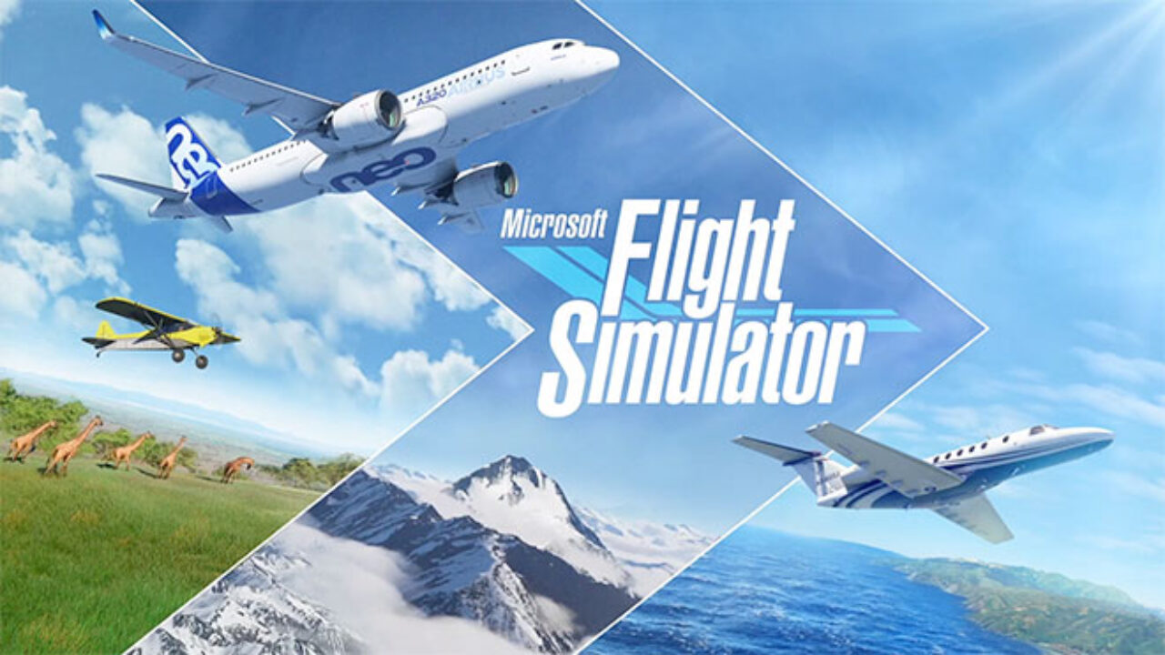 Microsoft Flight Simulator indir