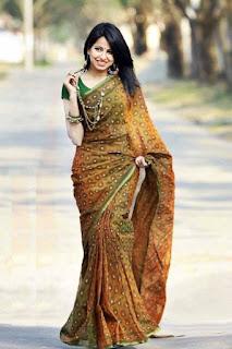 taaha chowdhury in saree