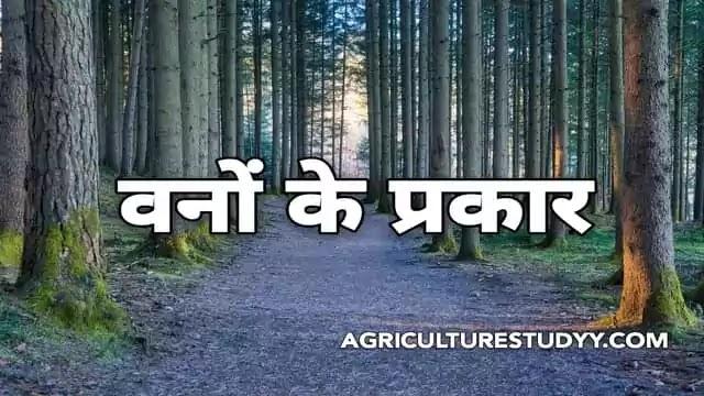 भारतीय वन के प्रकार एवं उनका वर्गीकरण ( Types of forest in hindi )