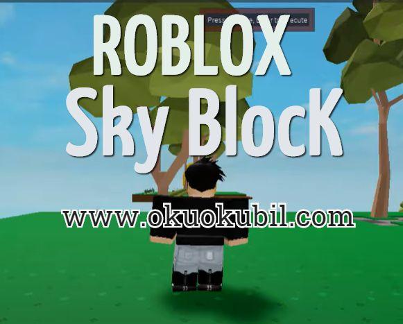 Roblox Beta Sky Block Infınıte Everythıng Sonsuz Script Hilesi İndir 2020