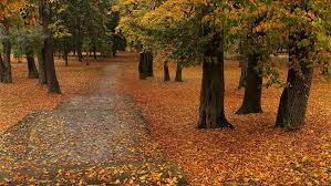 Počela jesen
