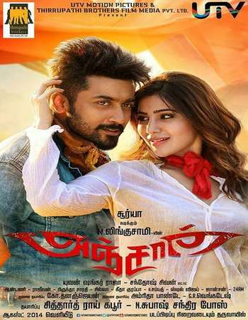 Poster Of Shoot on Anjaan 2014 ORG Dual Audio 450MB BRRip 480p Free Download Watch Online