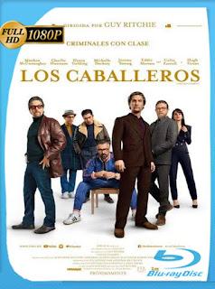 Los Caballeros (2020) HD [1080p] Latino [Google Drive] Panchirulo