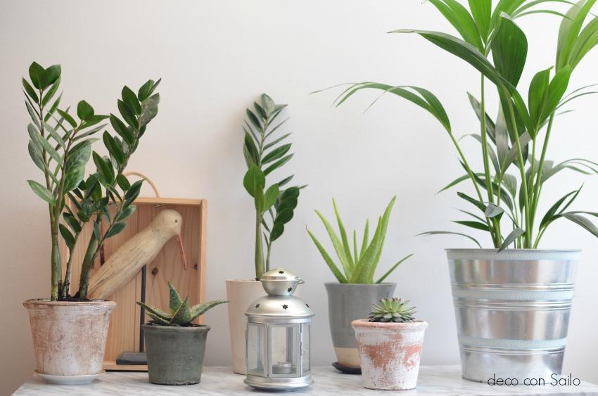 diy papel vinilico marmol plantas 3