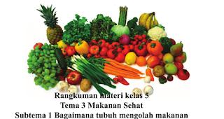 Rangkuman materi kelas 5 tema 3 Makanan sehat