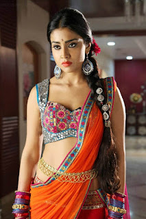shriya saran Hot Image