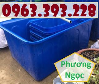Thùng nhựa chữ nhật nuôi cá, thùng nhựa công nghiệp, thùng dung tích lớn Uda1521596021
