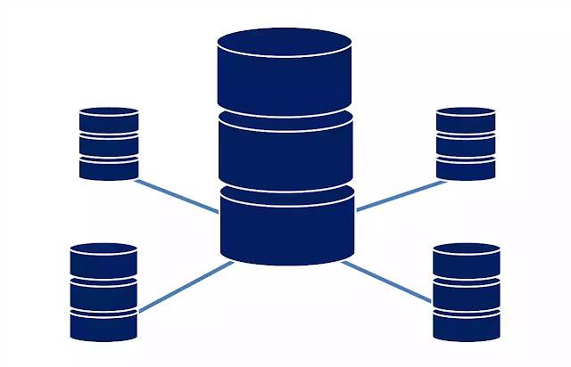 database-details-overview-bangla
