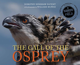 review of The Call of the Osprey by Dorothy Hinshaw Patent
