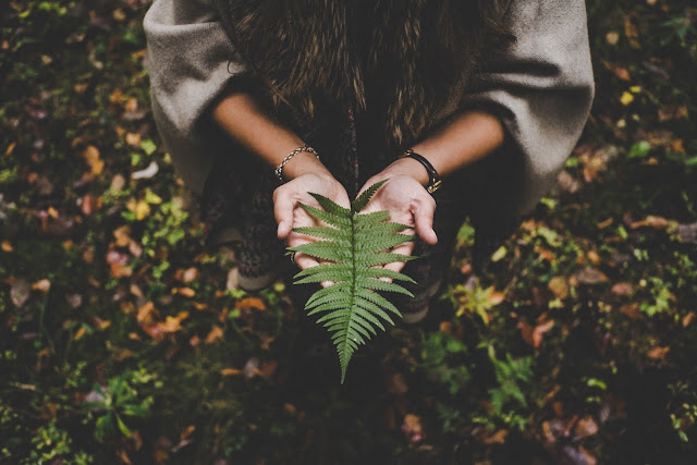A person holding a leaf while standing on leaf-filled ground.