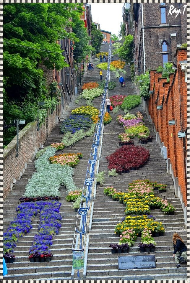 10 Best Places to Holiday in Belgium (100+ Photos) | Guerilla gardening in Liège