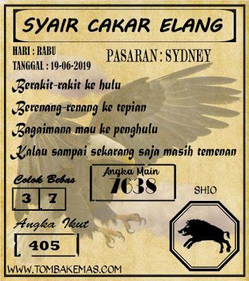 SYAIR SYDNEY 19-06-2019