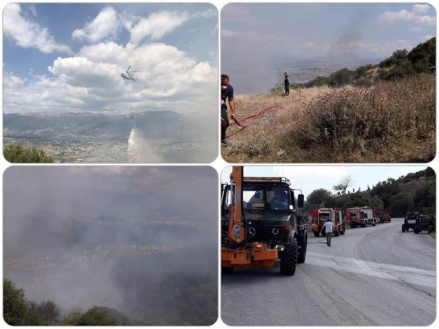Γιάννενα: Υπό πλήρη έλεγχο οι φωτιές σε Σταυράκι και Κοσμηρά. Νέα εστία στα Μουζακαίικα Πάργας