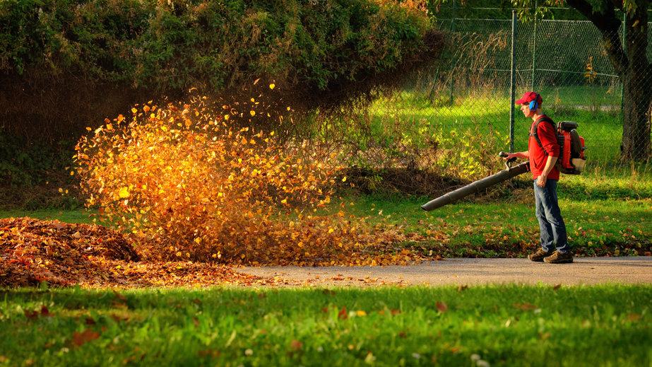 2 bonnes raisons d'adopter les souffleurs de feuilles pour votre jardin