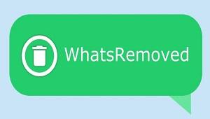 WhatsRemoved+