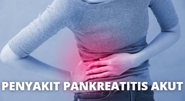 Penyakit Pankreatitis Akut : Pengertian, Tanda dan Gejala, Penyebab, Faktor Risiko Pada Tubuh Manusia Pengertian Pankreatitis Akut Pankreatitis akut adalah inflamasi (pembengkakan) pada pankreas dan biasanya terjadi secara tiba-tiba. Pankreas menghasilkan zat yang disebut dengan cairan pankreas (yang mengandung enzim pencernaan) dan hormon insulin bagi tubuh termasuk mengatur kadar glukosa. Luka yang terus menerus pada pankreas dapat menyebabkan kondisi kronis.  Pankreatitis akur=t bisa berakibat fatal dan menyebabkan banyak komplikasi. Namun, penyakit ini tidak menular. Sekitar 50.000 sampai 80.000 kasus pankreatitis akut terjadi setiap tahun di Amerika Serikat. Sekitar 20 % dari kasus merupakan kasus yang parah. Dalam kasus-kasus serius, syok dan kematian dapat terjadi.  Tanda dan Gejala Pankreatitis Akut Gejala yang muncul pertama adalah rasa nyeri pada perut yang berlangsung selama beberapa hari dan sering terasa berat. Rasa sakit dapat menyebar ke dada dan punggung. Rasa sakit dapat muncul secara tiba-tiba, dan terasa cukup berat namun beberapa saat terasa ringan, dan dapat terasa lebih sakit ketika makan. Pembengkakan pembuluh darah perut ringan dapat terjadi. Gejala lain termasuk mual, mutah, demam dan denyut nadi yang cepat.  Penyebab Pankreatitis Akut Beberapa faktor yang dapat menyebabkan Pankreatitis Akut yang diantaranya adalah : Penyebab paling umum yaitu disebabkan oleh batu empedu dan alkohol Efek samping dari obat-obatan resep Pernah menjalani operasi pada bagian perut Adanya kelainan pada usus dan pankreas Infeksi yang jarang terjadi (seperti gongok) Obstruksi atau pembentukan goresan pada pankreas, kanker, dan infeksi pankreas Kadang-kadang, dalam beberapa kasus, penyebabnya tidak dapat diketahui.  Faktor Risiko Pankreatitis Akut Faktor risiko Pankreatitis Akut adalah sebagai berikut : Perokok berat Penyalahgunaan Alkohol Mereka yang mengonsumsi terlalu banyak alkohol biasanya memiliki risiko yang lebih tinggi. Riwayat Keluarga Memiliki anggota kel