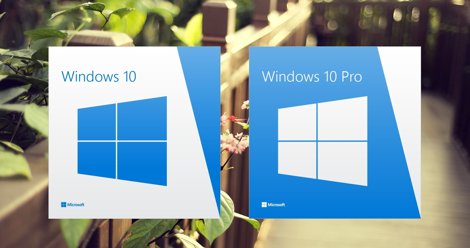 Windows 10 Pro Final Original Microsoft Vlsc: All In One Multiple Editions