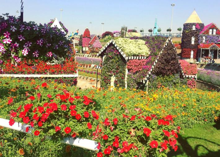 Visit Dubai Miracle Garden