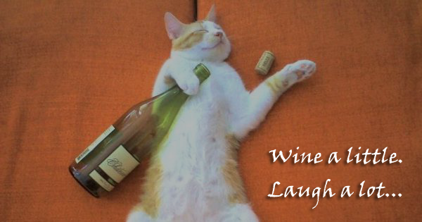Wine Quote - Wine a little