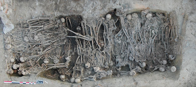 Ancient genomes provide insight into genetic history of second plague pandemic
