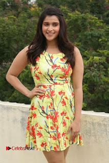 Actress Mannara Chopra Pictures in Floral Short Dress at Jakkanna Movie Interview  0011