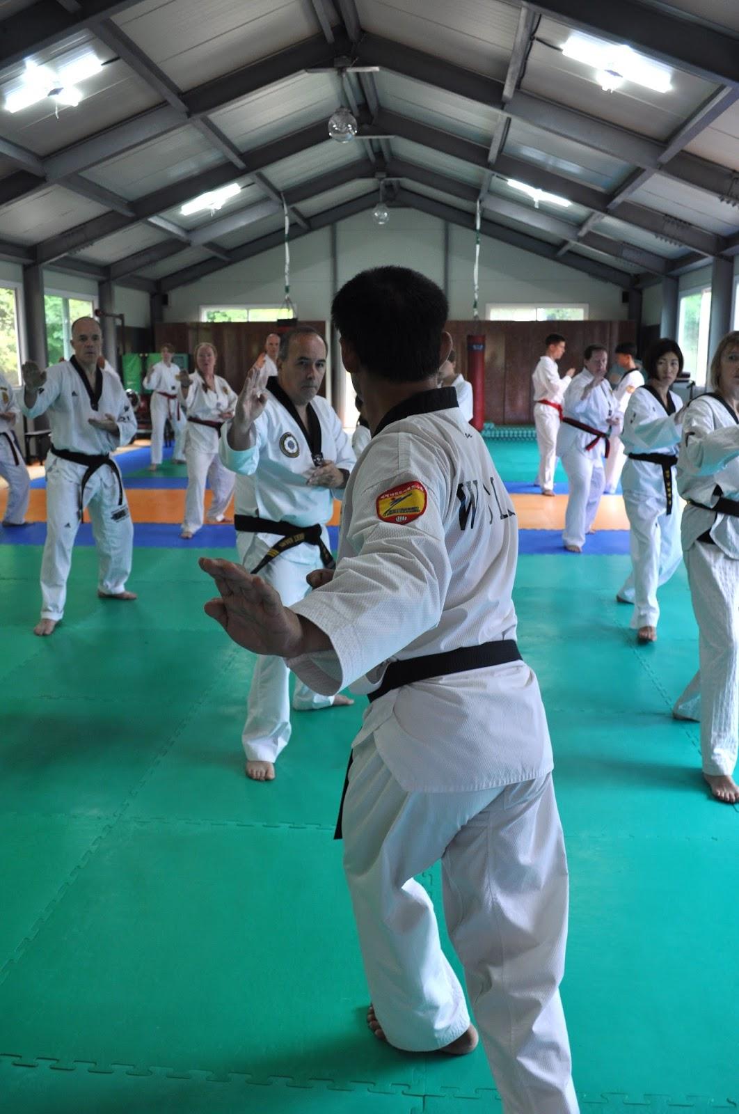 The Chosun Taekwondo Journal: 2015
