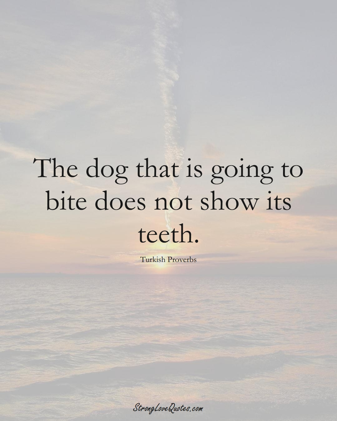 The dog that is going to bite does not show its teeth. (Turkish Sayings);  #MiddleEasternSayings