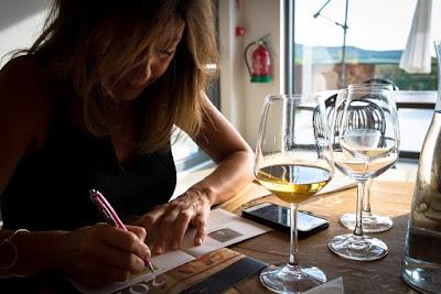 Il bicchiere mezzo pieno libro vino