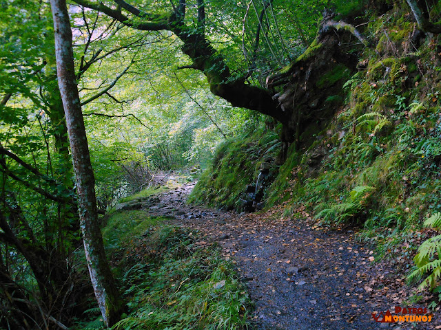 Desfiladero de Los Arrudos: Prendeoriu, sendero