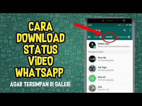 Aplikasi Download Status WA