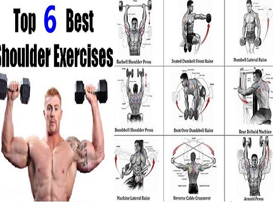 Top 6 Exercises To Build Shoulder Muscles
