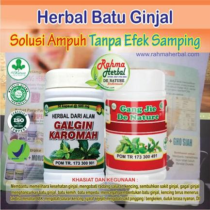 Paket Herbal Batu Ginjal