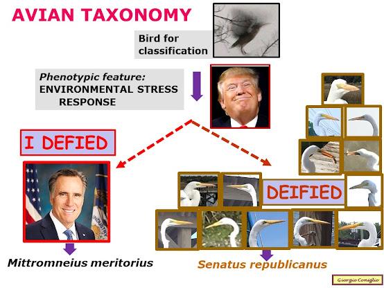 American politics; Mitt Romney; Donald Trump; taxonomy; great egret