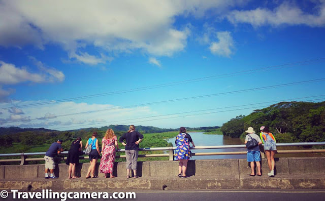 Costa Rica, Crocodile Bridge, Croc Bridge, San Jose, Jaco, Tarcoles River, American Crocodile, Nature, Wildlife, Wildlife Photography,