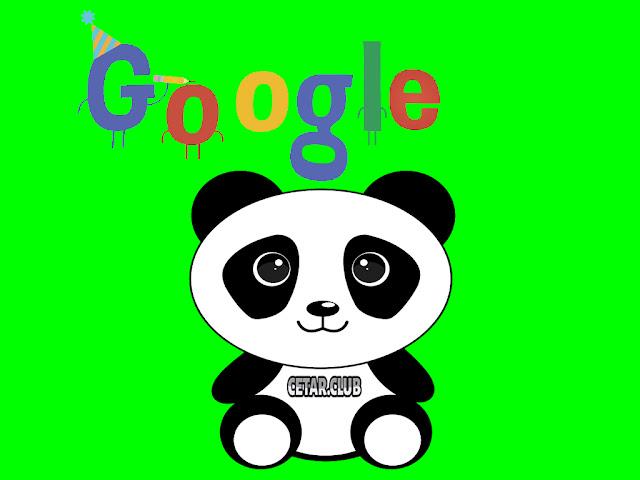 Optimasi Ulang Website Yang Terkena Google Panda Penalty