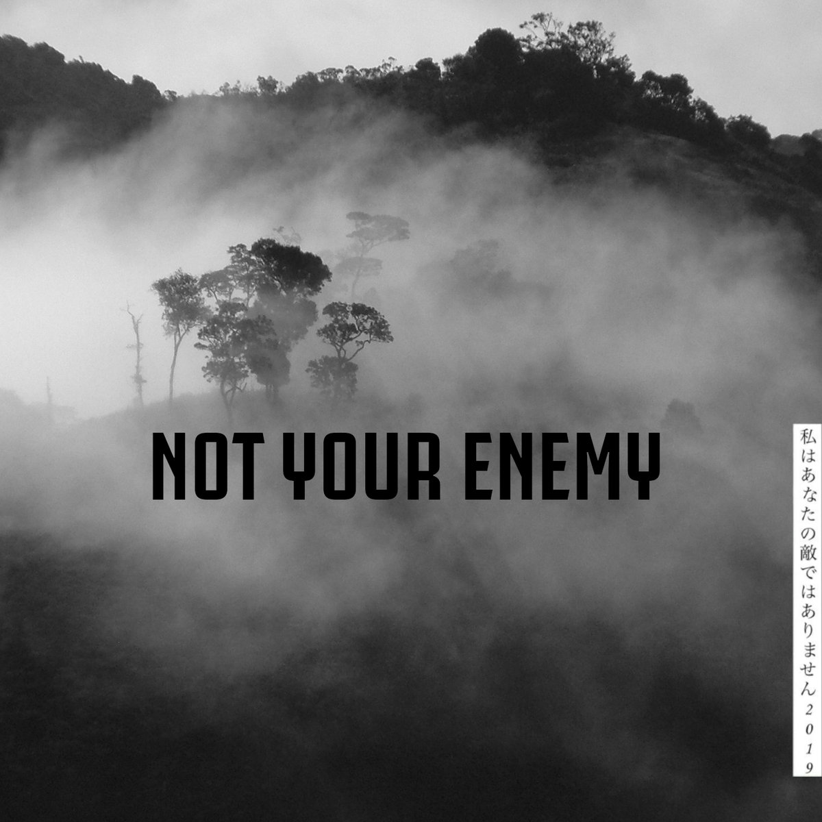 Screaming Fastcore ::: Not Your Enemy - Not Your Enemy EP (2019)