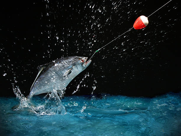 Night Fishing – Be Prepared for Anything