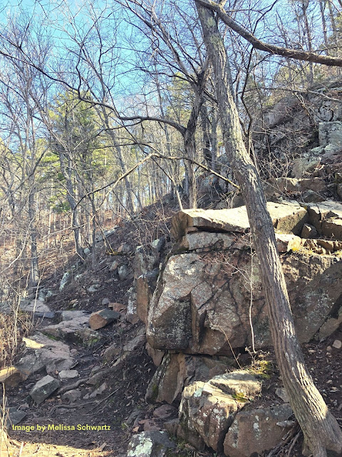 Trails along Pickle Creek wind through rocky outcrops.