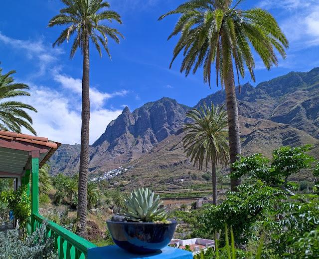 Foto van een dal met palmbomen op Gran Canaria