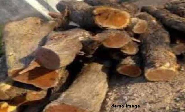 हिमाचलः उपप्रधान के घर वन विभाग ने मारा छापा, बरामद हुई खैर की लकड़ी