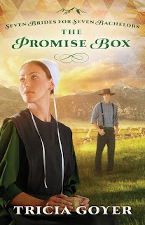 Tricia Goyer, Amish fiction