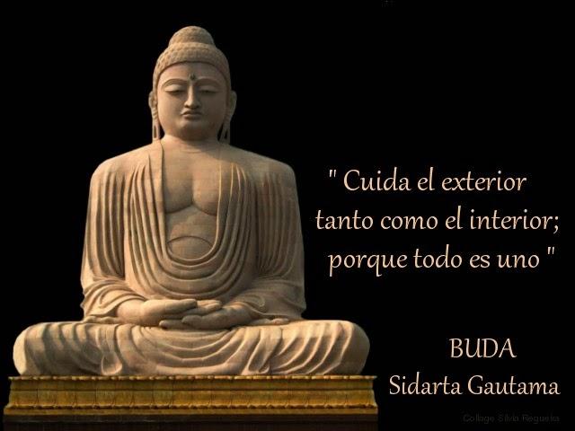 5 Frases Para Reflexionar De Siddharta Gautama Mas Conocido