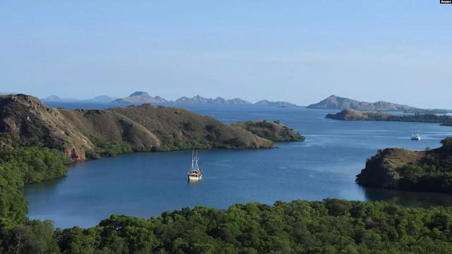 Organisasi Lingkungan Khawatir Pembangunan Pulau Rinca Ganggu Habitat Komodo