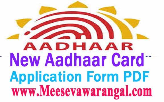 Aadhar Card Form 2013 Pdf