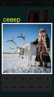 рядом с оленем на севере стоит мужчина в национальной одежде